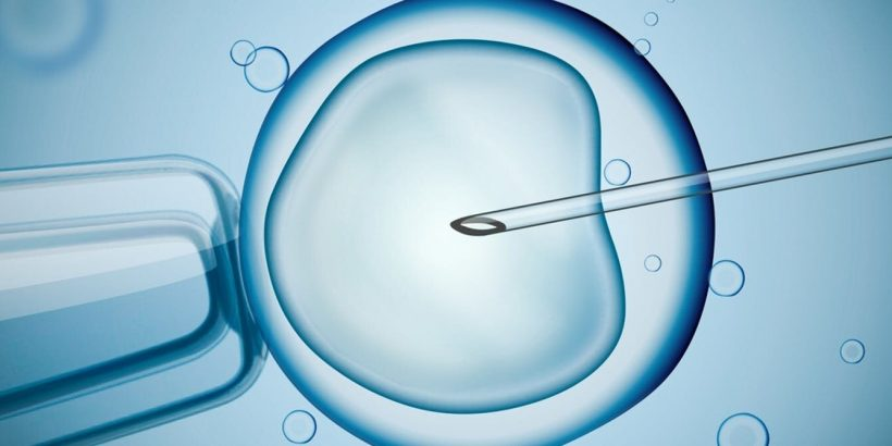 Nur single-frauen lassen ihre eizellen einfrieren
